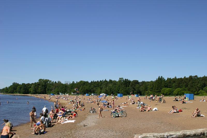 зеленогорск ленинградская область фото пляжей и набережной лишь свежесрезанные