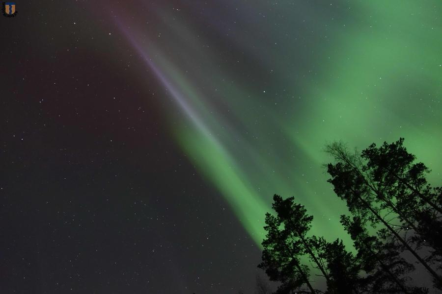 Северное сияние над Зеленогорском, ночь 18.03.2015 .Фото А. Шейниса
