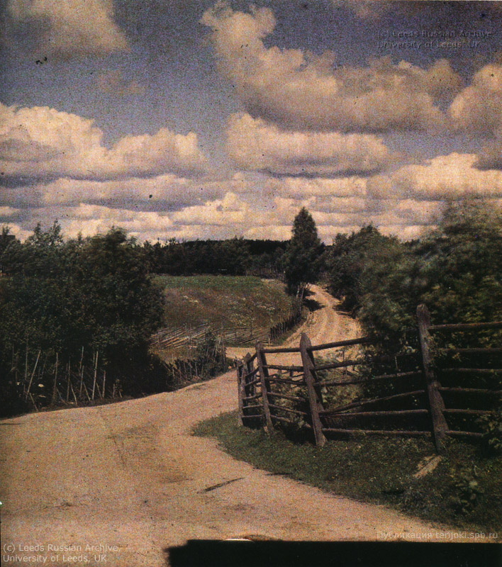 Проселочная дорога в окрестностях Ваммельсуу. Фотография Л. Андреева, 1910 г.
