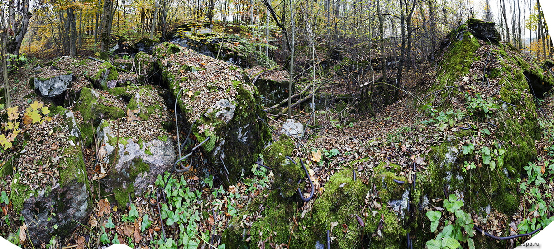 Руины финского полукапонира