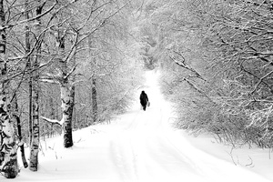 winter_path
