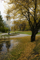 northern_autumn-2