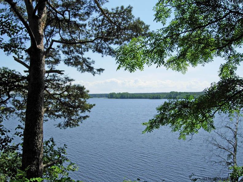 озеро тарасовское ленинградская область рыбалка
