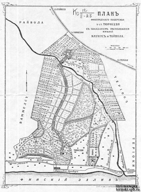 """План дачной местности """"Каунис и Тойвола"""" в Тюрисевя. Начало 1900-х гг."""