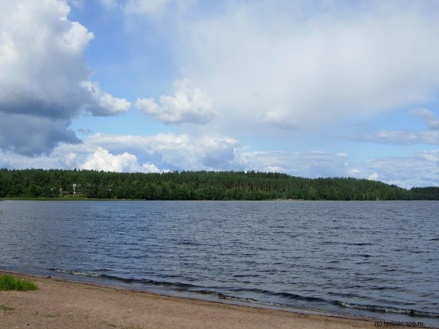 озеро в ермилово лен обл картинки канадский