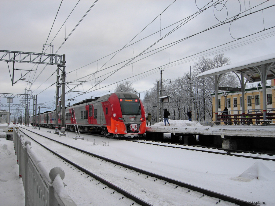 Зеленогорск, 02.12.2016 г. Фото Д. Ю. Верёвкина