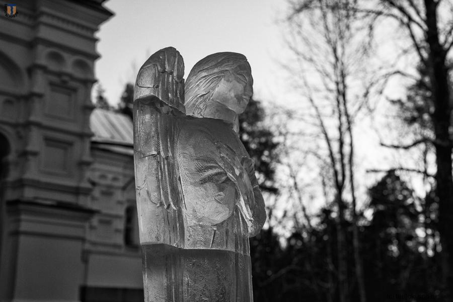 Фото А. Браво, 06.01.2017 г.